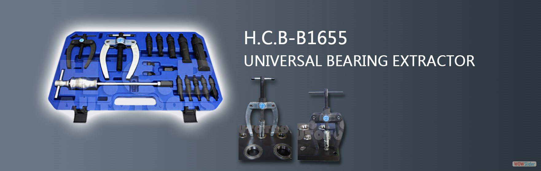 HCB Auto Tools - H C B-A1393 VOLVO (FM12) TRUCK INJECTOR